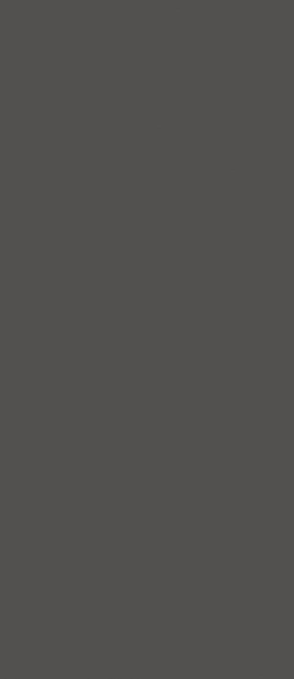 Супер матовый HPL 10622-TS